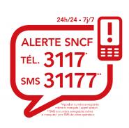 3117-31177